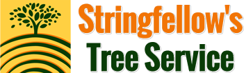 Stringfellow's Tree Service